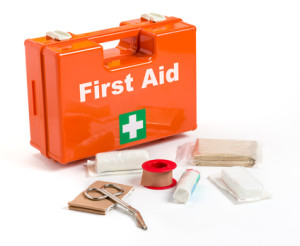 Simple First Aid Kit To Go