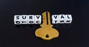 Analysis of Dave Canterbury's 10 C's of Survival