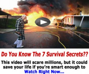 free disaster tips